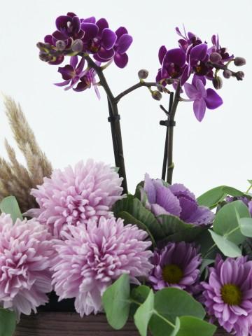 Mini Orkideli Çiçek Tasarımı Orkideler çiçek gönder