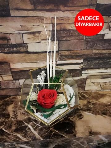 Geometrik Cam Vazoda Kırmızı Solmayan Gül Aranjmanlar çiçek gönder