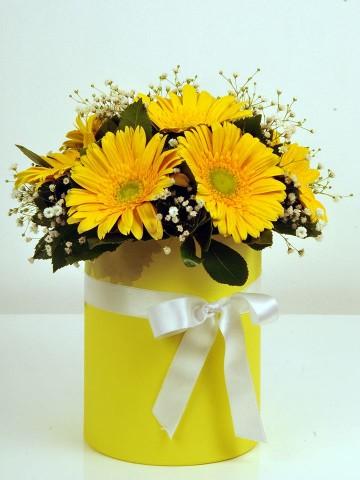 Alman Papatyam Kutuda Çiçek çiçek gönder