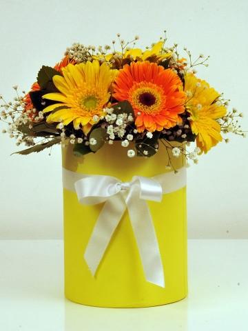 Sarı Papatyam Kutuda Çiçek çiçek gönder