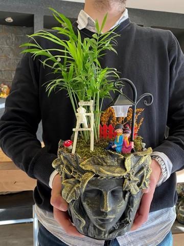 Özel Tasarım Saksıda Işıklı Bahçemiz Saksı Çiçekleri çiçek gönder