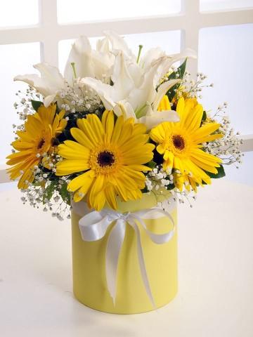 Gün Işığı Kutuda Çiçek çiçek gönder