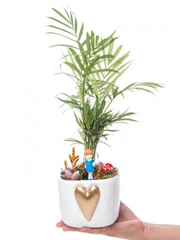 Cuore Serisi Chamadora Tasarım Saksı Çiçekleri çiçek gönder