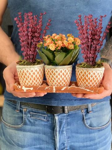 Özel Tasarım Lavanta ve Kalanchoe Bitkisi Saksı Çiçekleri çiçek gönder