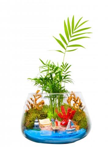 Masmavi Teraryum Terarium çiçek gönder