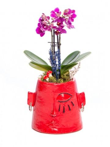 Arati Serisi Mini Mor Orkide Tasarım Orkideler çiçek gönder