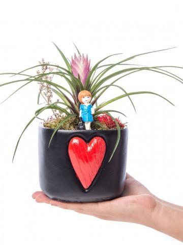 Cuore Serisi Tillendsia Tasarım Saksı Çiçekleri çiçek gönder