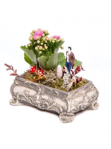 Ahiri Serisi Kalanchoe Tasarım Saksı Çiçekleri çiçek gönder