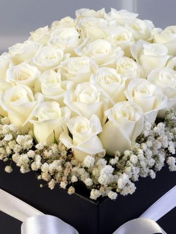 Siyah Tutku Kutuda Çiçek çiçek gönder
