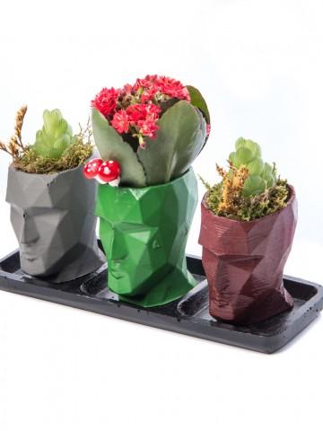 Trio Zeus Serisi Kalanchoe Tasarım Saksı Çiçekleri çiçek gönder