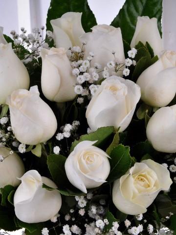 Vazoda 17 Beyaz Gül Aranjmanı Aranjmanlar çiçek gönder