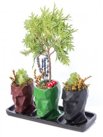 Trio Zeus Serisi Mazı Bonsai Tasarım Saksı Çiçekleri çiçek gönder