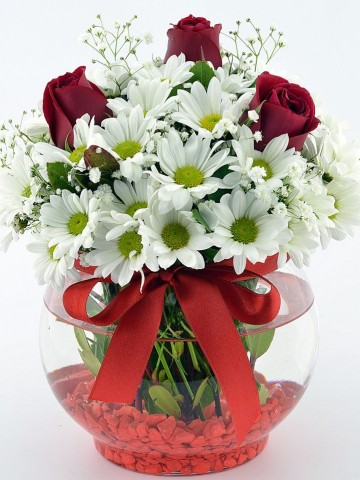 Sihirli Kürede Aşk  Aranjmanlar çiçek gönder