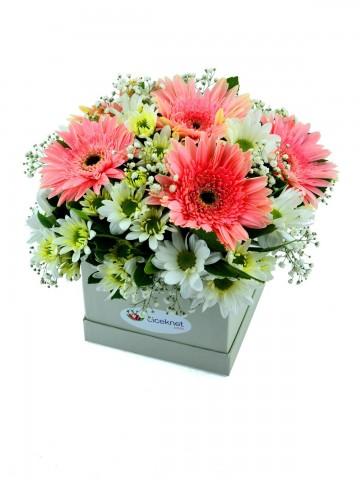 Beyaz Kutu Papatyalar Kutuda Çiçek çiçek gönder