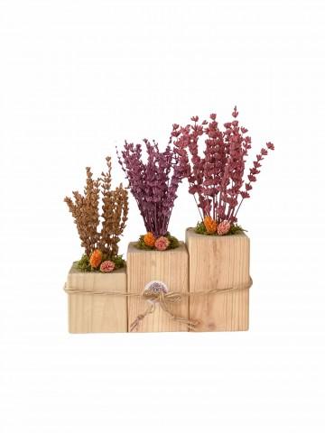 Özel Tasarım Üçlü Lavanta Seti Saksı Çiçekleri çiçek gönder