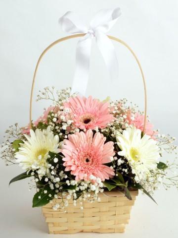 Sepette Gerbera Aranjmanı Aranjmanlar çiçek gönder
