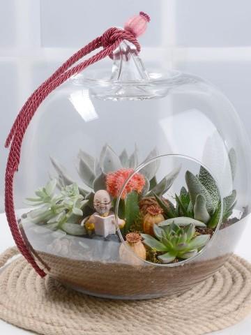 Toprak Kokulu Terrarium Terarium çiçek gönder
