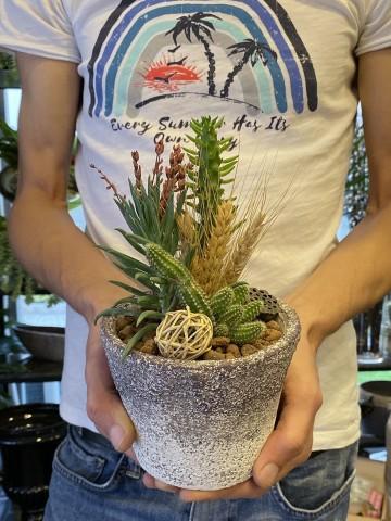 Şık Teraryum Aranjmanı Terarium çiçek gönder