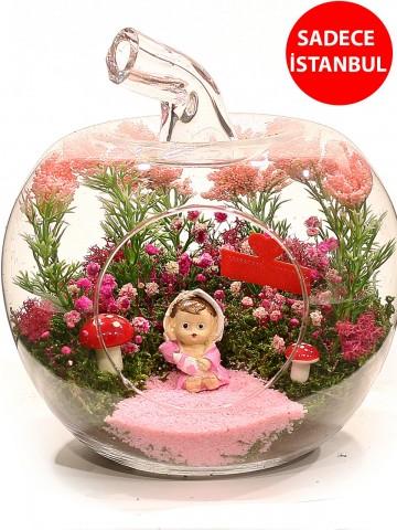 Yenidoğan Kız Bebek Teraryum Aranjmanı Terarium çiçek gönder