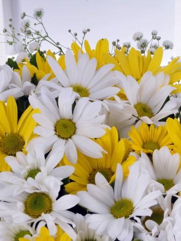 Kır Çiçekleri. Aranjmanlar çiçek gönder