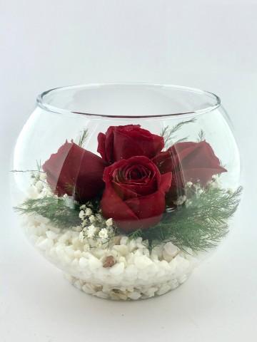 Akvaryum Camda 5 Kırmızı Gül Aranjmanlar çiçek gönder