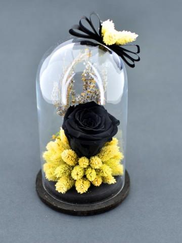 Siyah Solmayan Gül Solmayan Güller  çiçek gönder