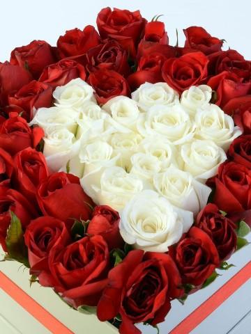 Beyaz Kutuda Kırmızı Beyaz Güller Kutuda Çiçek çiçek gönder