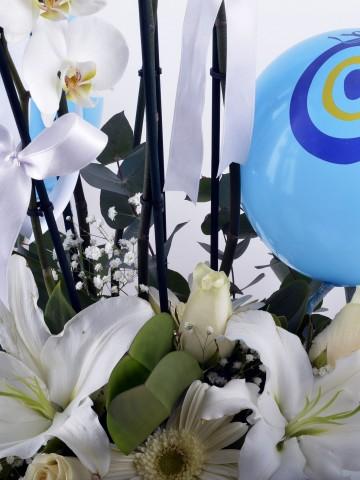 Nazar Değmesin Orkide Çiçeği Aranjmanı Orkideler çiçek gönder
