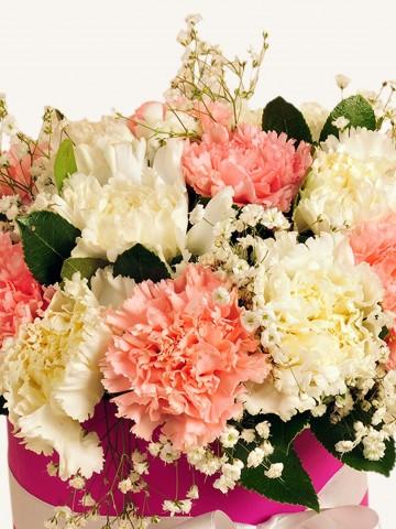 Pembe ve Beyaz Karanfilli Çiçek Aranjmanı. Kutuda Çiçek çiçek gönder