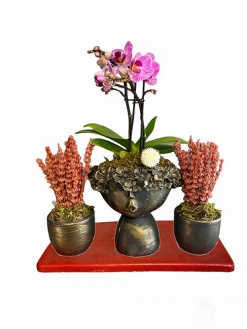 Lavantalı Orkide Set Orkideler çiçek gönder