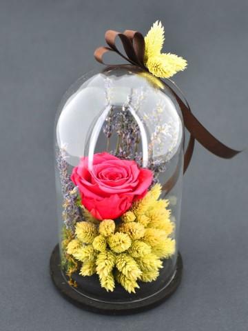 Birtek Sen Solmayan Gül Solmayan Güller  çiçek gönder