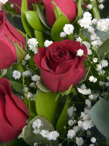 Buket 19 Kırmızı Gül. Buketler çiçek gönder