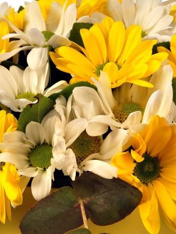 Sarı Saçlarındaki Huzur Kutuda Çiçek çiçek gönder