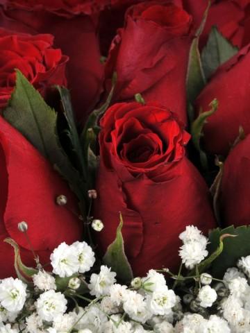 Vazoda 21 Kırmızı Gül Arajmanı Aranjmanlar çiçek gönder