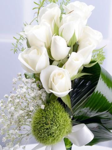 En Güzel Hikayem Beyaz Güller Aranjmanlar çiçek gönder