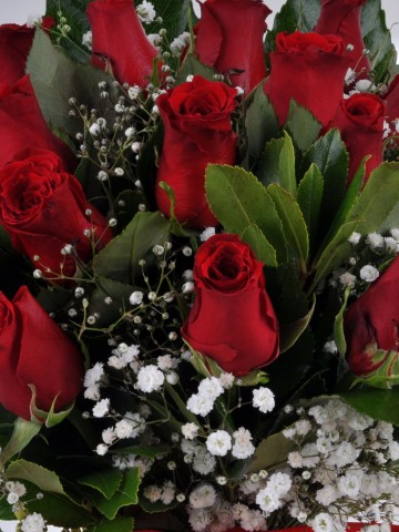 Vazoda 17 Kırmızı Gül Aranjmanı Aranjmanlar çiçek gönder