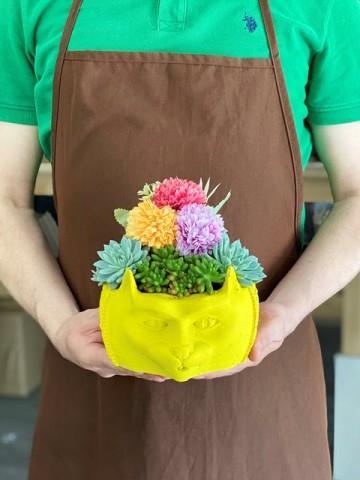 Kedili Saksıda Sukulent  Terarium çiçek gönder