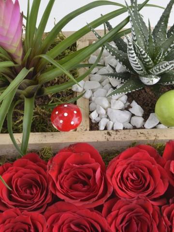 Teraryumlu Gül Bahçesi Terarium çiçek gönder
