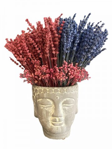 Budha Saksıda Lavantalar Saksı Çiçekleri çiçek gönder