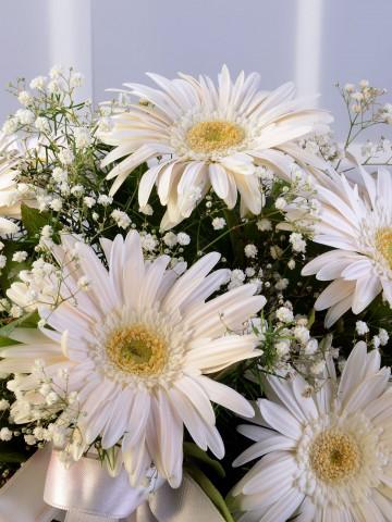 Cam Vazoda Beyaz Gerberalar Aranjmanlar çiçek gönder