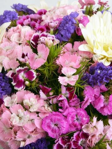 Sepette Kır Çiçeği Aranjmanı. Aranjmanlar çiçek gönder