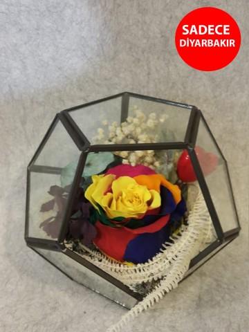 Geometrik Cam Vazoda Rengarenk Solmayan Gül Aranjmanlar çiçek gönder