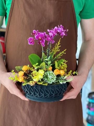 Özel Tasarım Mini Orkide Çiçeği Orkideler çiçek gönder