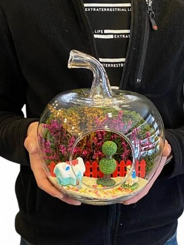 Başbaşa Teraryum Aranjmanı Terarium çiçek gönder