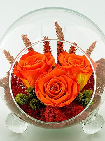 Cam Kürede Turuncu Solmayan Güller Solmayan Güller  çiçek gönder