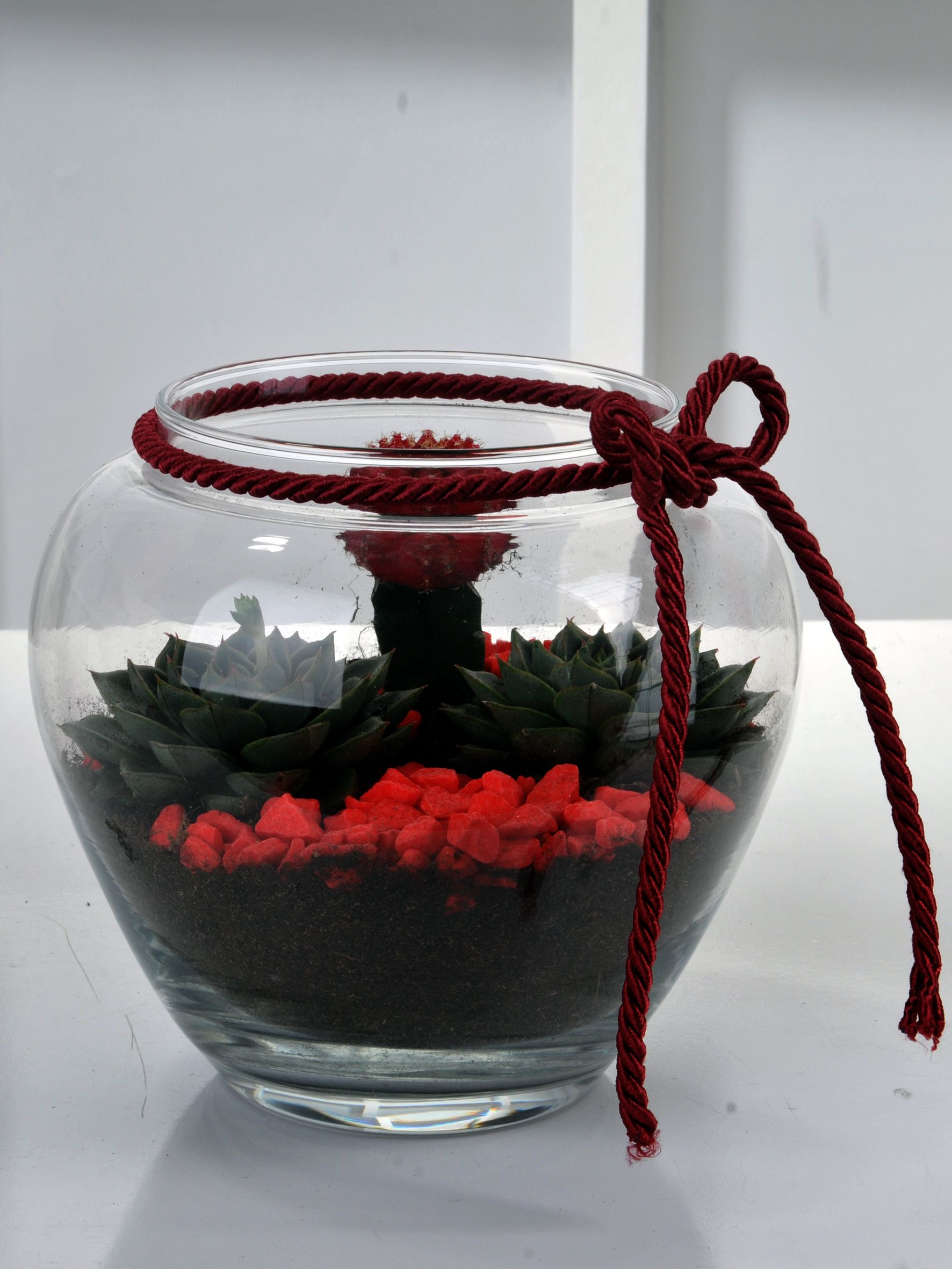 Paşabahçe Fanusta Teraryum  çiçek gönder