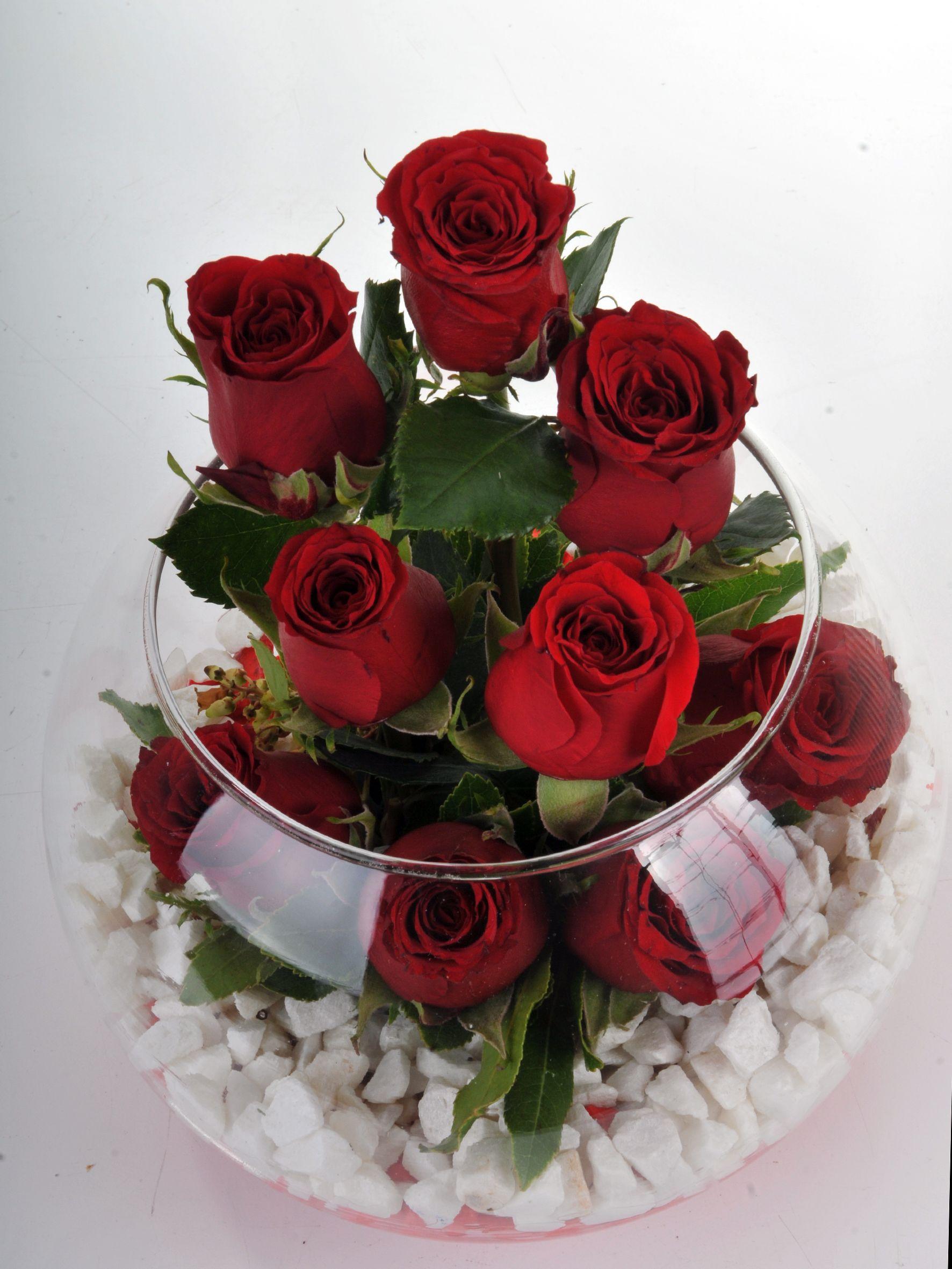 Fanus Vazoda 9 Kırmızı Gül.. Aranjmanlar çiçek gönder