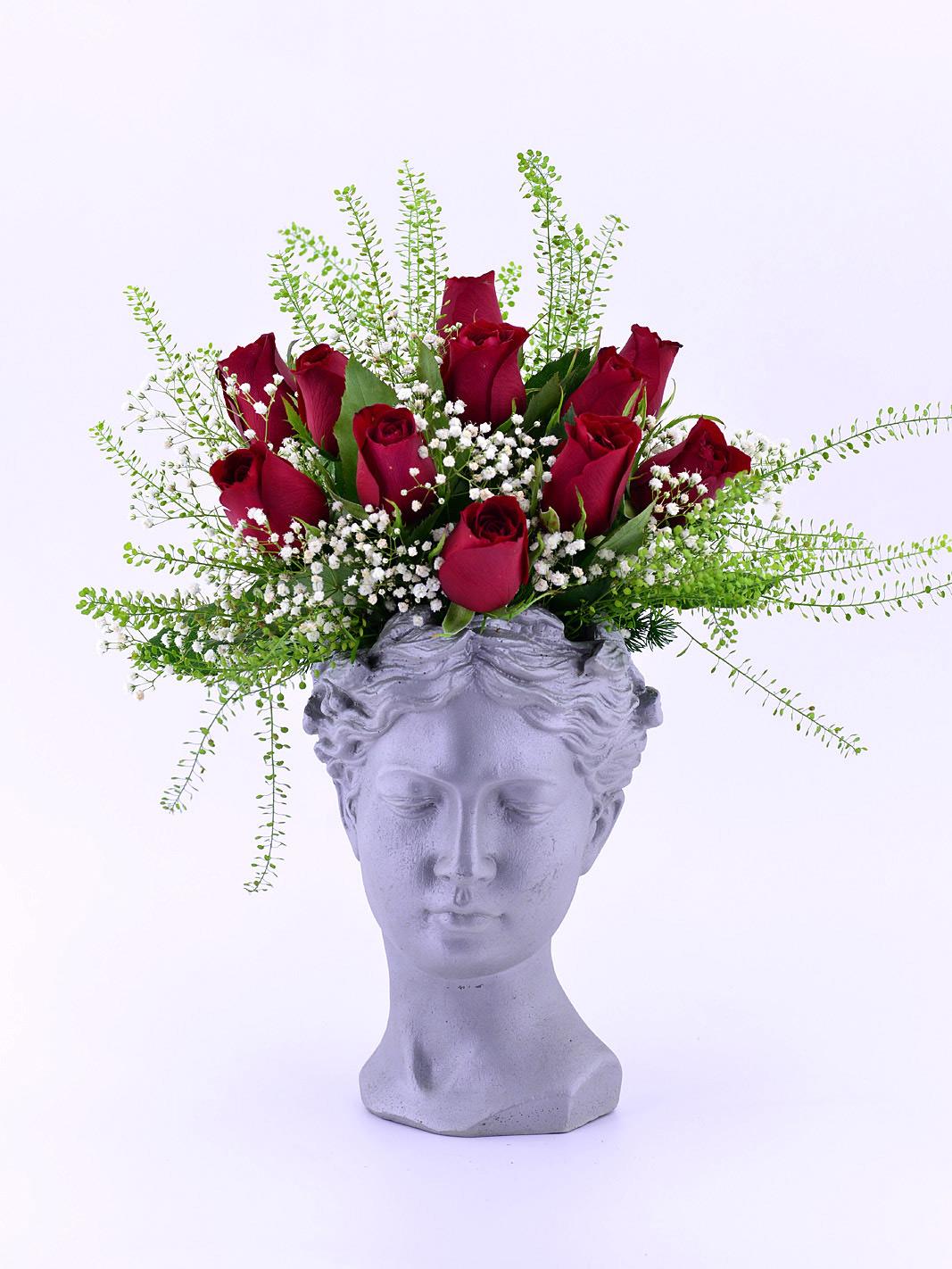 Helen Saksıda 11 Kırmızı Gül Aranjmanlar çiçek gönder