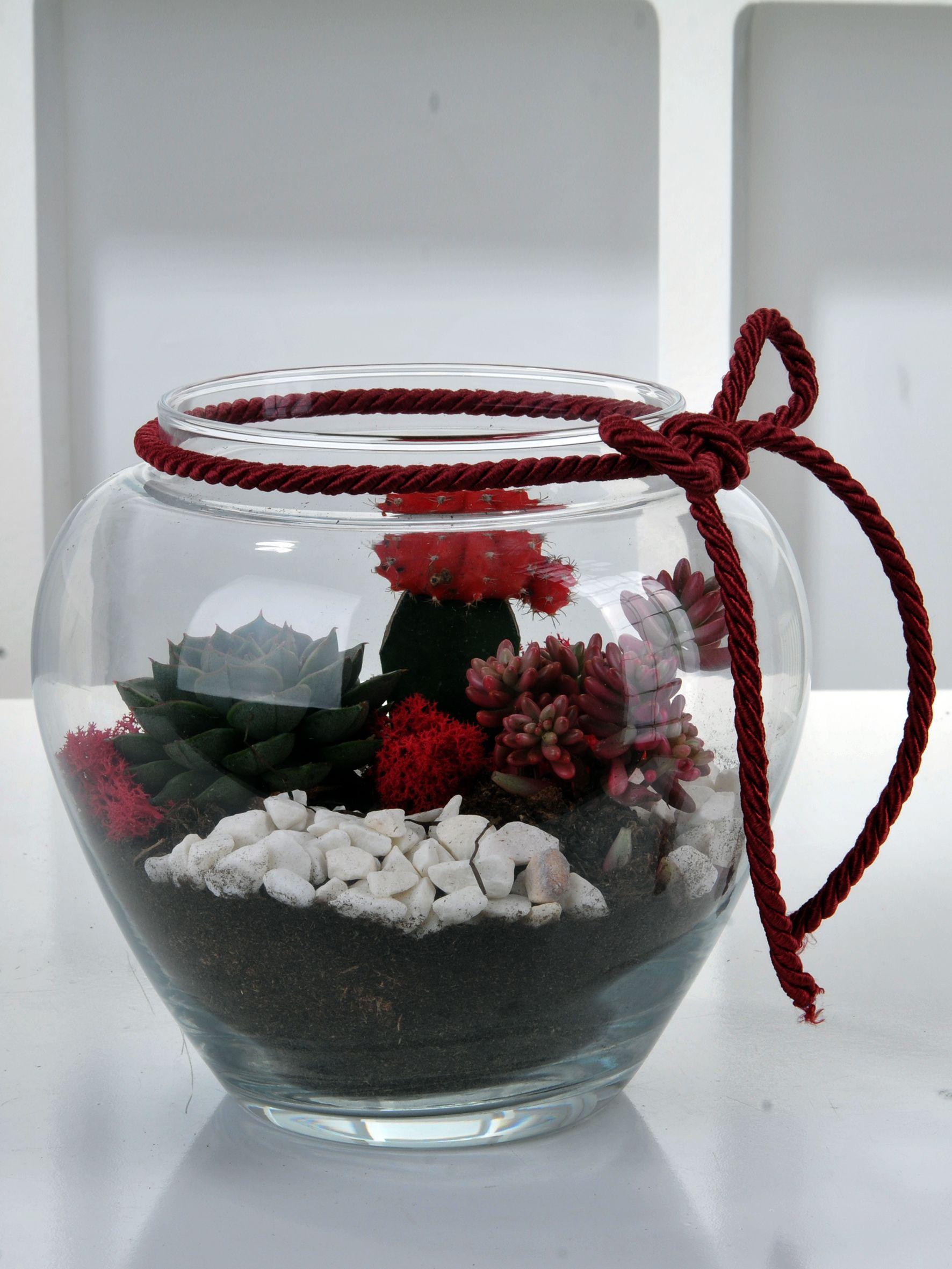 Terrarium Evi  çiçek gönder