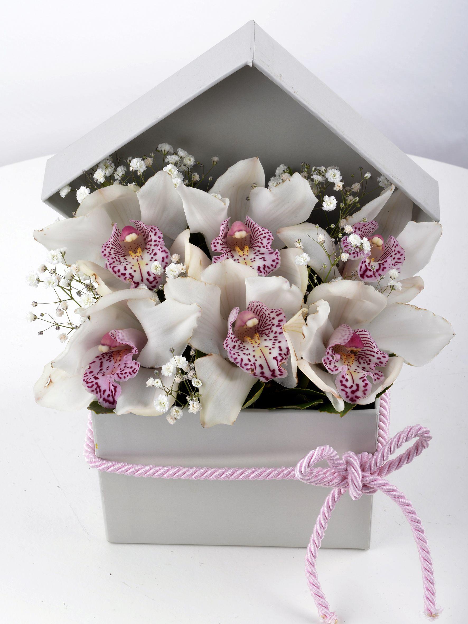 Kutuda Beyaz Spidyum Orkide  çiçek gönder
